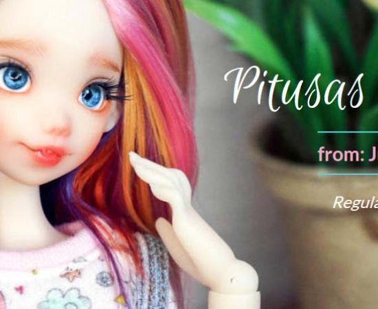 Pitusas Preorder Regular Colors 2018
